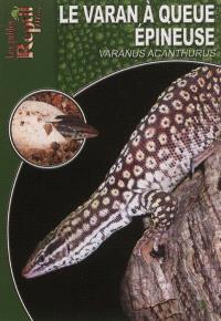 Le varan à queue épineuse : Varanus acanthurus