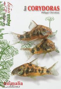 Les corydoras : corydoras aeneus, paleatus & Cie