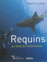 Requins : au-delà du malentendu