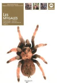 Les mygales