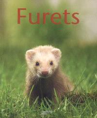Furets
