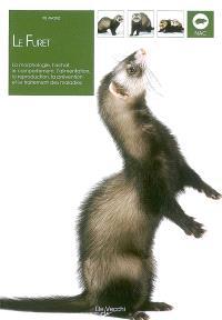 Le furet : la morphologie, l'achat, le comportement, l'alimentation, la reproduction, la prévention et le traitement des maladies