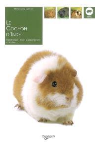 Le cochon d'Inde : morphologie, choix, comportement, maladies...