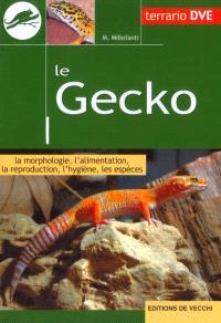 Le gecko : la morphologie, l'alimentation, la reproduction, l'hygiène, les espèces