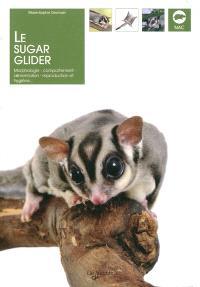 Le sugar glider : morphologie, comportement, alimentation, reproduction et hygiène...