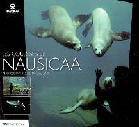 Les coulisses de Nausicaa