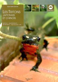Les tritons japonais et chinois : espèces, aquaterrarium, alimentation, reproduction, etc.