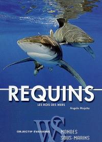 Requins : les rois des mers