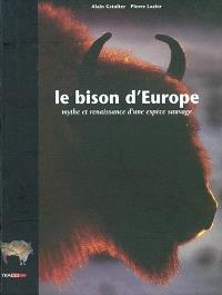 Le bison d'Europe : mythe et renaissance d'une espèce sauvage