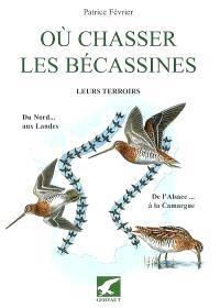 Où chasser les bécassines : leurs terroirs, du Nord aux Landes, de l'Alsace à la Camargue