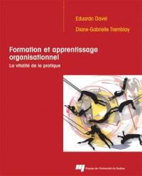 Formation et apprentissage organisationnel  : la vitalité de la pratique