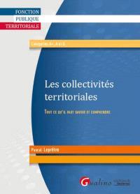 Les collectivités territoriales : tout ce qu'il faut savoir et comprendre : catégories A+, A et B