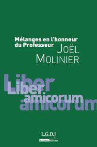 Mélanges en l'honneur du professeur Joël Molinier : liber amicorum