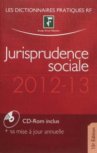 Jurisprudence sociale : droit du travail : 2012-13
