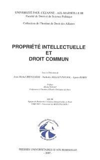 Propriété intellectuelle et droit commun
