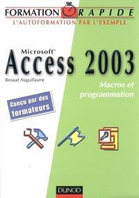 Microsoft Access 2003 : macros et programmation