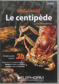 Atelier créatif le centipède