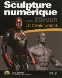 Sculpture numérique avec ZBrush : l'anatomie humaine