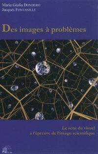 Des images à problèmes : le sens du visuel à l'épreuve de l'image scientifique