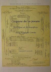 L'organe de la pensée : biologie et philosophie chez Auguste Comte