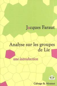 Analyse sur les groupes de Lie : une introduction