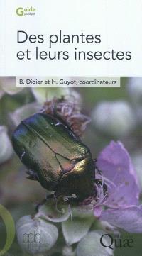 Des plantes et leurs insectes