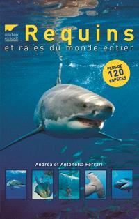 Requins et raies du monde entier : plus de 120 espèces