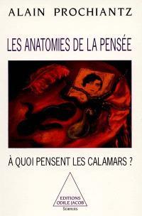 Les anatomies de la pensée : à quoi pensent les calamars ?