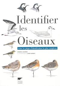 Identifier les oiseaux : éviter les pièges d'identification les plus complexes