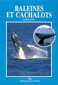 Baleines et cachalots