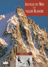 Aiguille du Midi et vallée Blanche