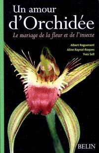 Un amour d'orchidées : le mariage de la fleur et de l'insecte