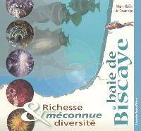 Baie de Biscaye : richesse et diversité méconnue