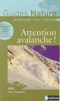 Attention avalanche !