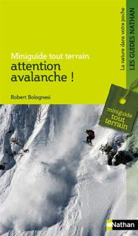 Attention, avalanche !