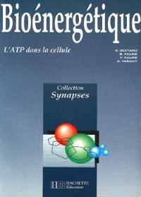 Bioénergétique : l'ATP dans la cellule
