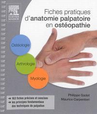 Fiches pratiques d'anatomie palpatoire en ostéopathie : ostéologie, arthrologie, myologie