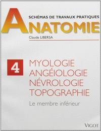 Schémas de travaux pratiques. Volume 4, Myologie, angéiologie, névrologie, topographie : membre inférieur