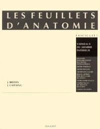 Les Feuillets d'anatomie : pour la préparation des concours hospitaliers et des examens de la Faculté de médecine. Volume 7, Vaisseaux du membre inférieur