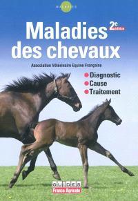 Maladies des chevaux : diagnostic, cause, traitement
