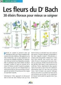 Les fleurs du Dr Bach : 38 élixirs floraux pour mieux se soigner