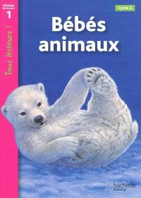Bébés animaux, cycle 2 : niveau de lecture 1