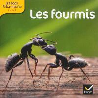 Les fourmis : cycle 2