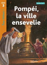 Pompéi, la ville ensevelie, cycles 2 et 3 : niveau de lecture 3