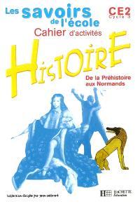 Histoire, de la Préhistoire aux Normands, CE2 cycle 3 : cahier d'activités