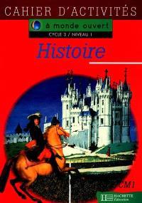 Histoire, cycle 3 niveau 1 : cahier d'activités