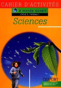 Sciences, cycle 3 niveau 1 : cahier d'activités