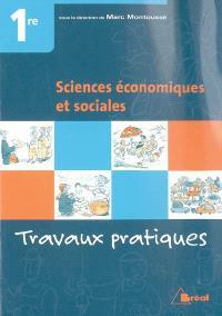 Sciences économiques et sociales 1re : travaux pratiques