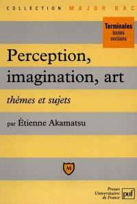 Perception, art, imagination