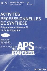 Activités professionnelles de synthèse, BTS comptabilité et gestion des organisations, 2e année : préparation à l'épreuve E6 : guide pédagogique